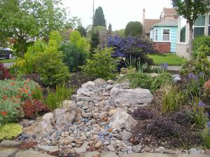 Natural Dry Bed surrounded by lush plantings