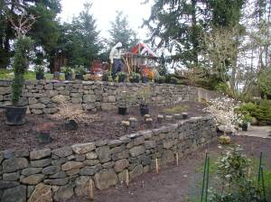 Terraced Wall Planting, Hillsboro, OR